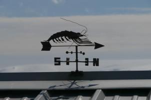 Ant-0159