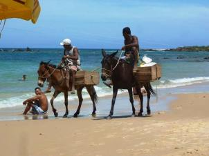 The island of Morro de Sao Paulo has no cars. This is one of the several means of transport ...