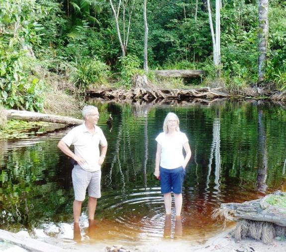 Black water ponds are found in the rainforests, the dark colour of the water coming from the vegetation